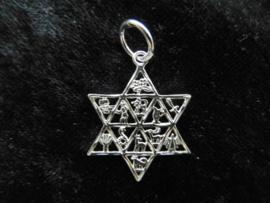 Zilveren Joodse ster met 12 stammen hanger.