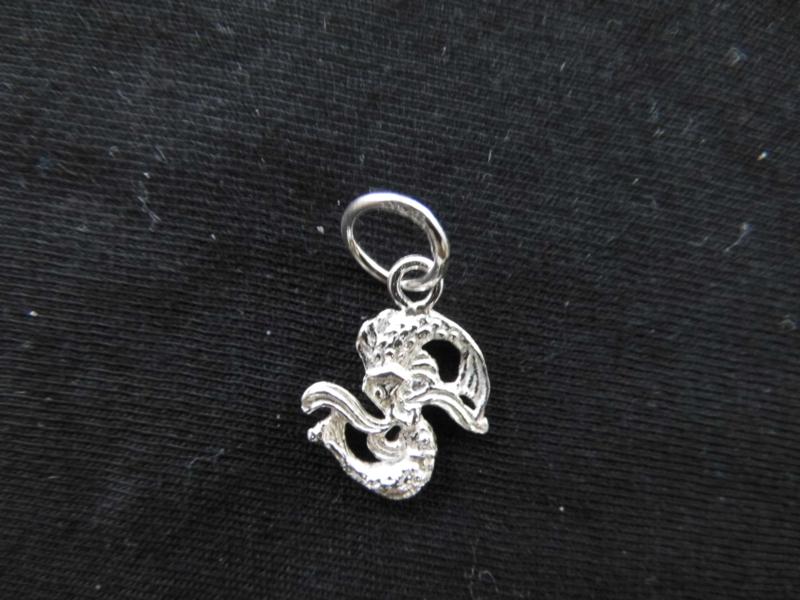 Zilveren sterrenbeeld vissen hanger.