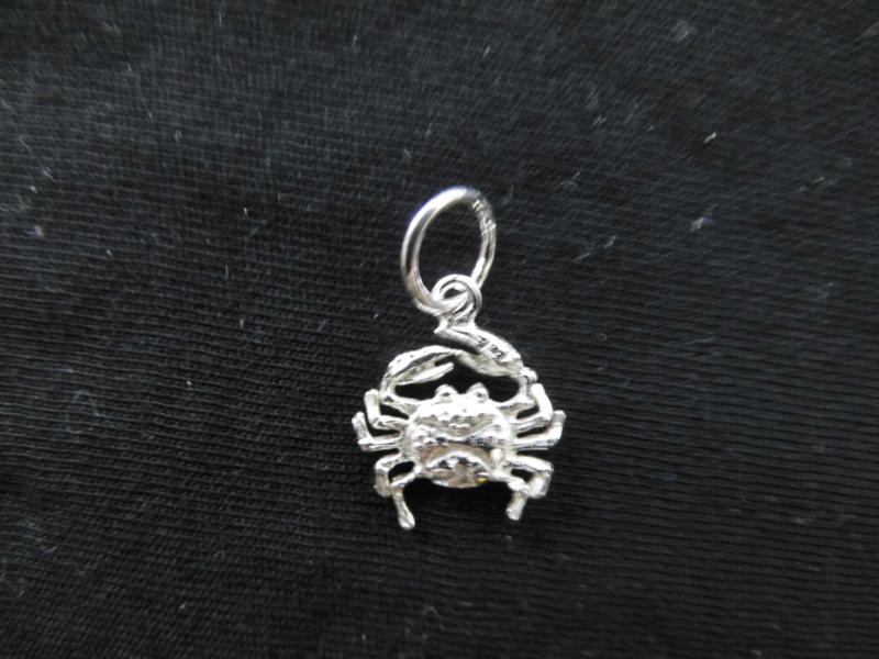 Zilveren sterrenbeeld kreeft hanger.