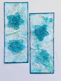 Kit Dianthus flower