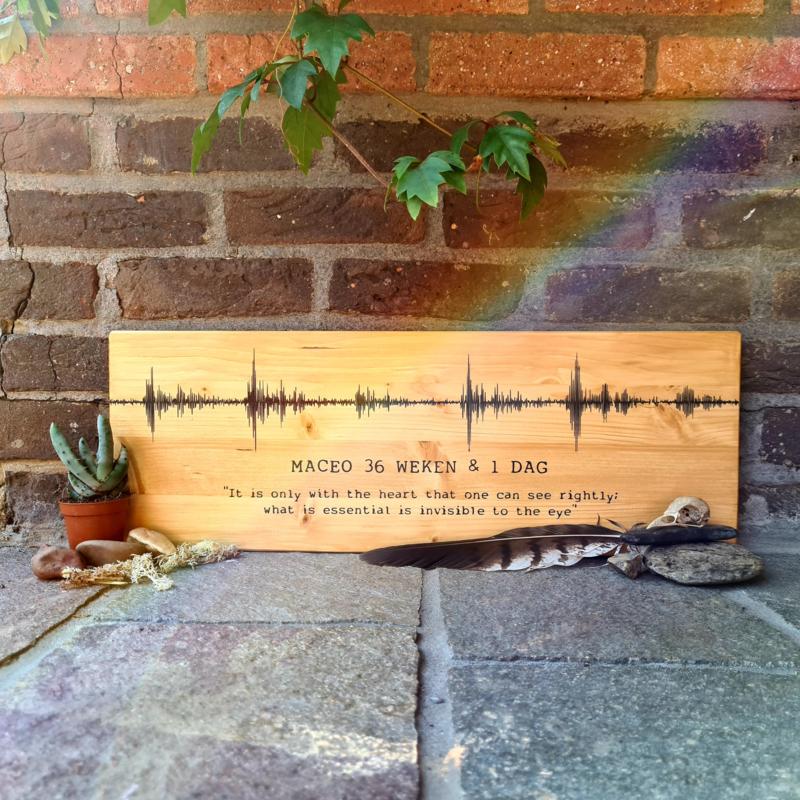 soundwave bord hartslag