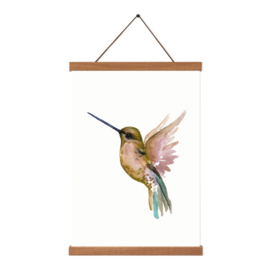 Poster - Hummingbird Gold