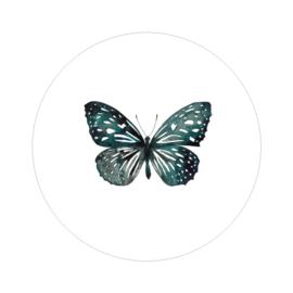 Interieurcirkel - Butterfly