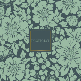 Wenskaart - Styled flowers 'proficiat'