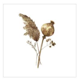 Cadeaukaartje - Dried flowers