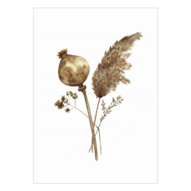 Kaart A6 - Dried Flowers