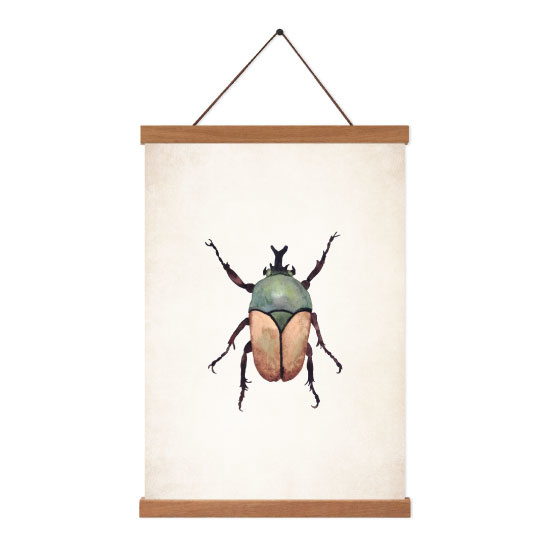 Poster A5 - Beetle Brown