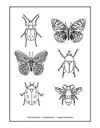 Kleurplaat insecten