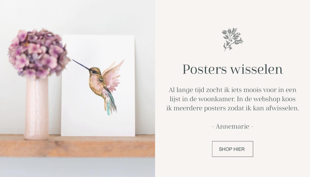 Poster kolibrie