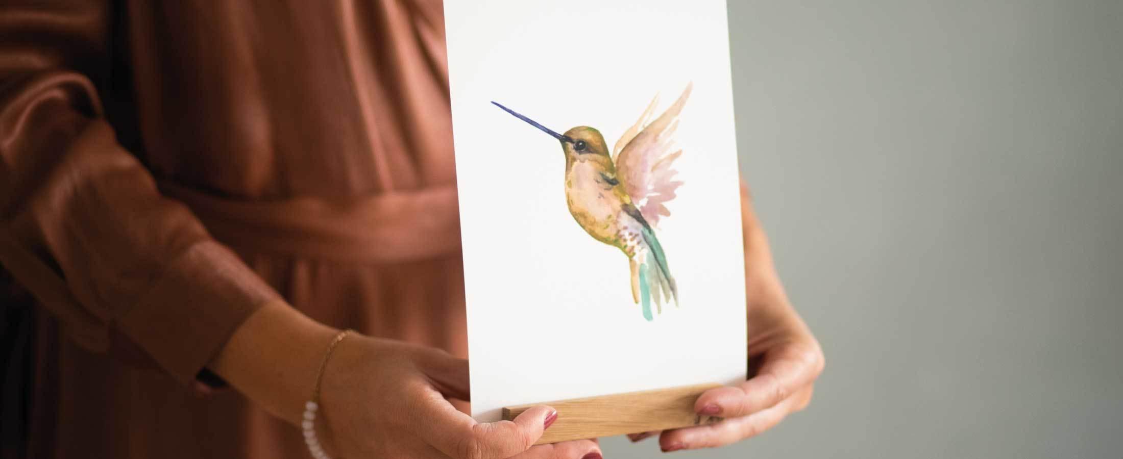 Illustratie Kolibrie