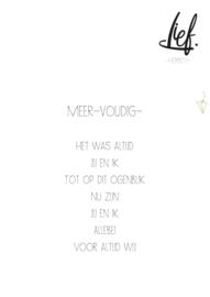 MEER-VOUDIG-
