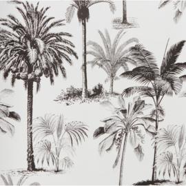 Palmboom Licht - € 20