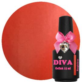 Diva Gel lak Cat Eye Suspicious 15ml