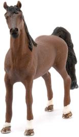 American Saddlebred ruin Schleich 13913