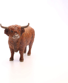 Schotse hooglander Schleich 13919