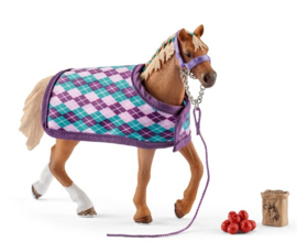 Paarden set