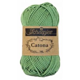 Catona 212 Sage Green