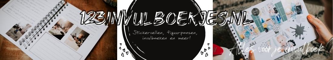 123invulboekjes.nl