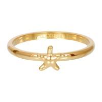 sea star zilver gold