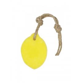 Hanger citroen