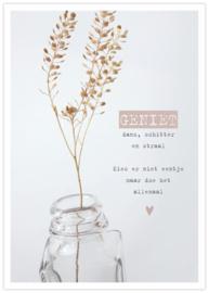 Poster Geniet
