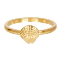 sea shell gold