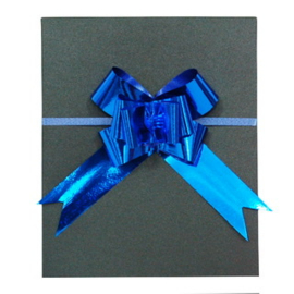 Strikjes Glanzend Blauw