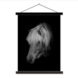 Schoolplaat Paard Black
