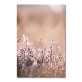 Canvas Heide Closeup