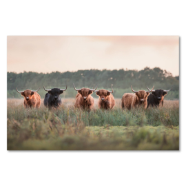 Canvas Kudde Schotse Hooglanders