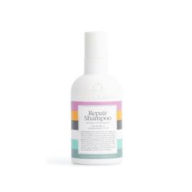 Waterclouds Repair Shampoo - 250 ml