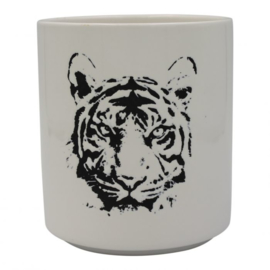 HV Flower Pot Tiger