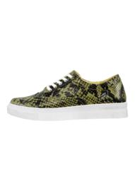 Sneaker Snake