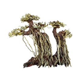 Bonsai Twin Tree Handmade