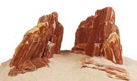 Versteend hout (per kilo)