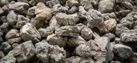 Elderly stone (per kilo)