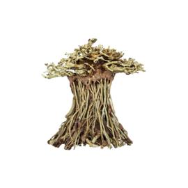 Bonsai Mushroom Handmade