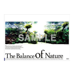 "ADA Poster ""Balance of nature"" boesemani"