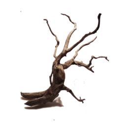 Scaper Root M 30cm