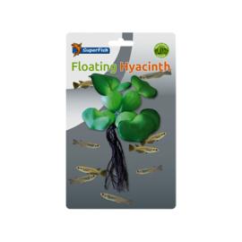 Superfish floating hyacinth