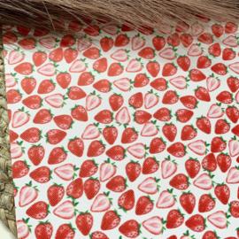 Aardbeien 34x20cm
