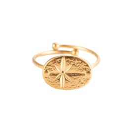 Ring met ster 'Lonely Star' goud