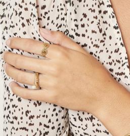 Ring 'Bamboo' goud