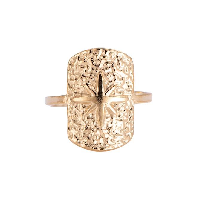 Ring met ster 'Xanthe' goud