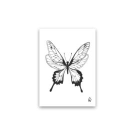 Kaart | Vlinder