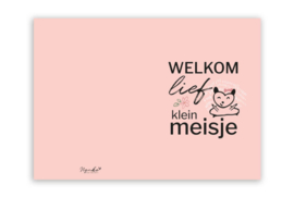 Kaart 'Welkom lief klein meisje'