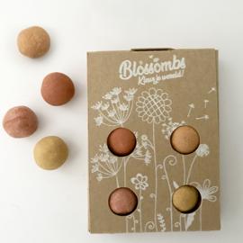 Blossombs Geschenkdoos klein