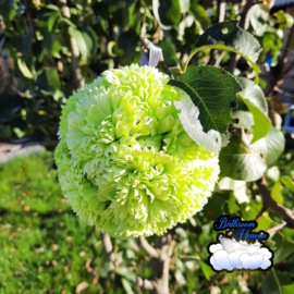 Flowerball green