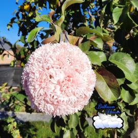 Flowerball pink
