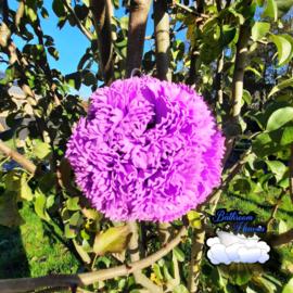 Flowerball purple